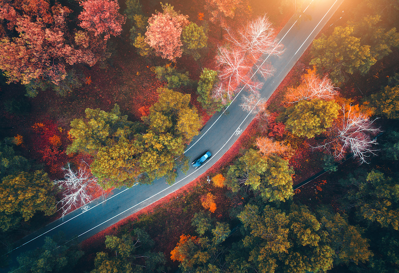 Aerial view of road with blurred car in autumn forest. Amazing landscape with rural road, trees with green, red and orange leaves in day. Highway through the park. Top view from flying drone. Nature