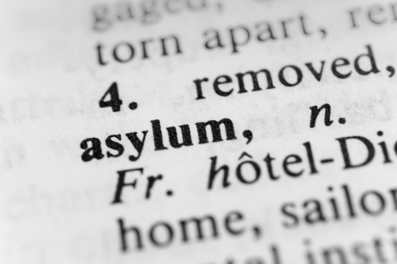 Asylum in the dictionary.