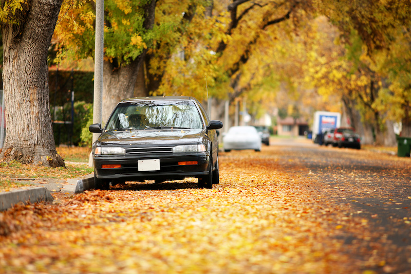 Autumn street covered with yellow leaves. Shallow DOF, focus on car.