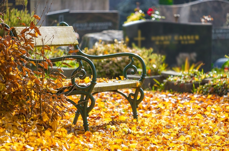 Bench in a cemetery during autumn.