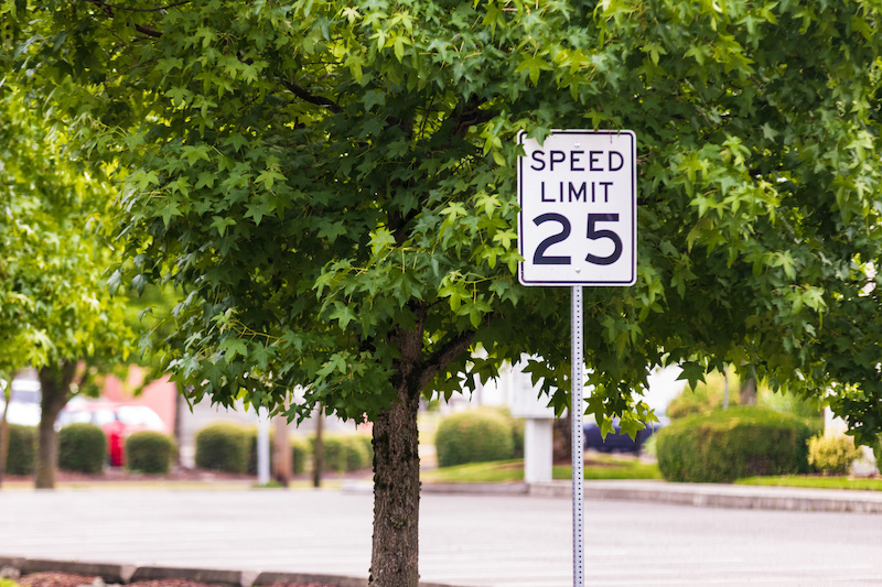 25 mph sign with a tree and concrete road and curb
