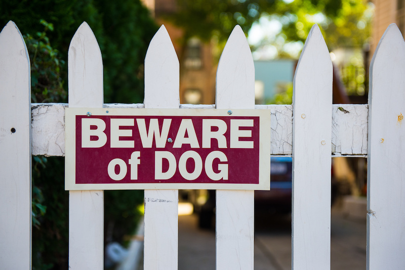 Beware of Dog sign on white gate.